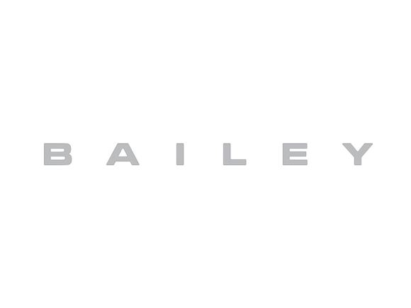 Chrome BAILEY Decal (Prespaced) product image