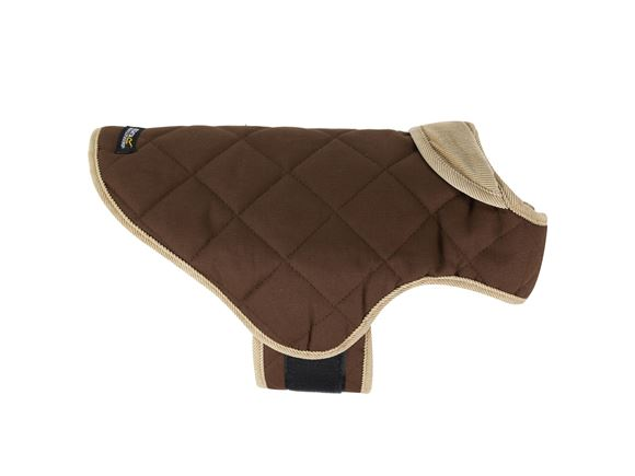 Regatta Chillguard Dog Coat product image
