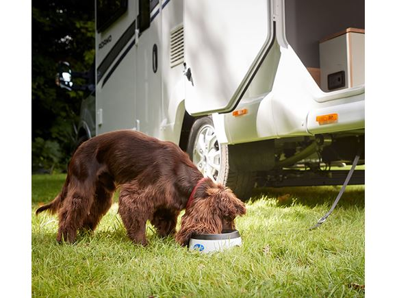 Read more about Adamo Motorhome Dog Pack product image